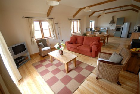 Large thebyre3