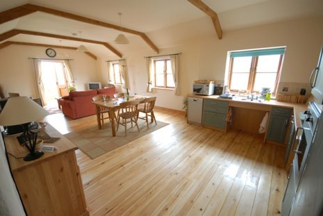 Large thebyre6