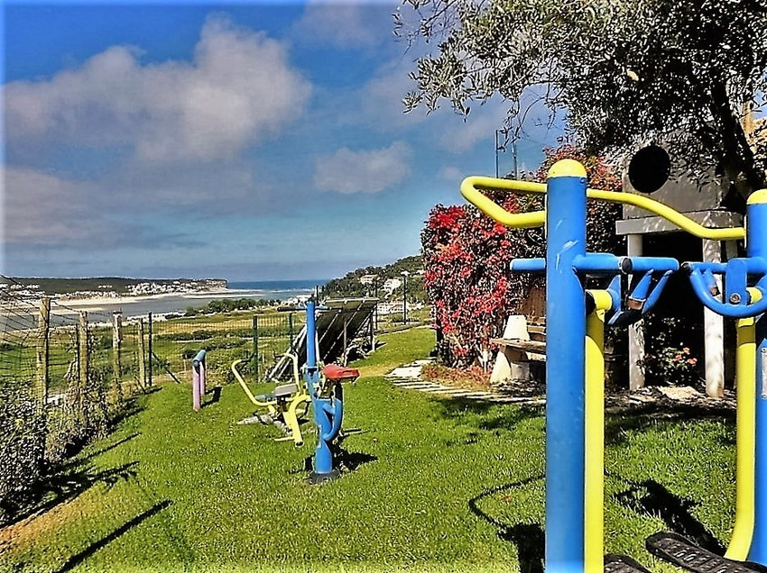 Large 20 outdoor gym aa